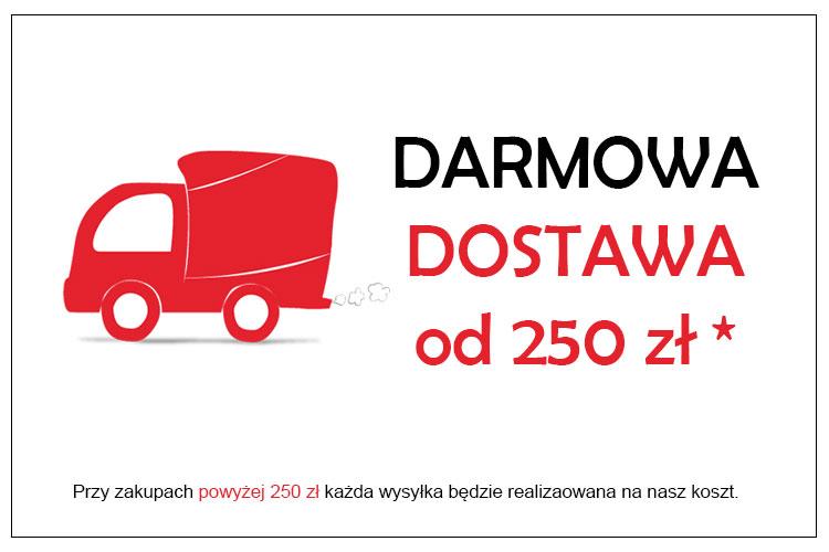 Darmowa dostawa od 250 zł